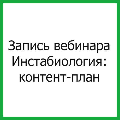 продвижение инстаграм аккаунта контент план   naoblakax.ru